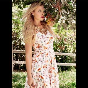 Eva Rose Anthropologie dress size s fox 🦊 print